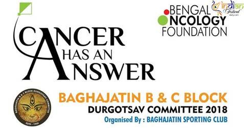 Baghajatin B and C Block Durgotsav Committee 2018