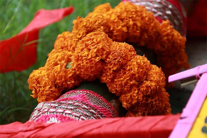 Pally Mangal Samity Durga Puja